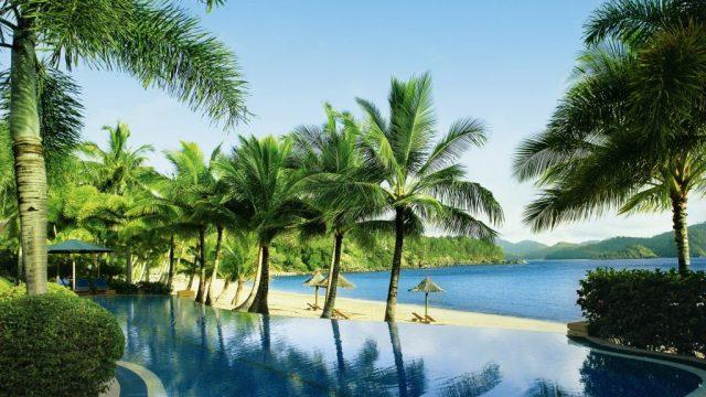 Остров Гамильтон пальмы