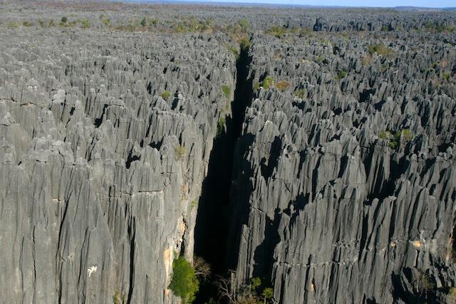 мадагаскарский каменный лес