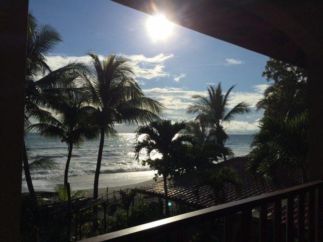 Вид с балкона отеля на пальмы и океан