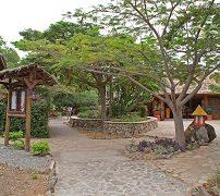 KIA-Lodge-5