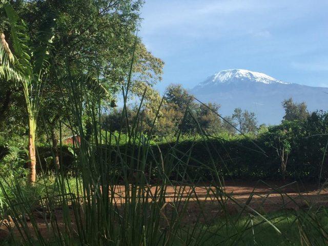 More-Than-A-Drop вид из гостиницы на гору Килиманджаро
