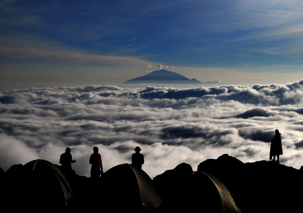 Вид с тропы Шира Килиманджаро