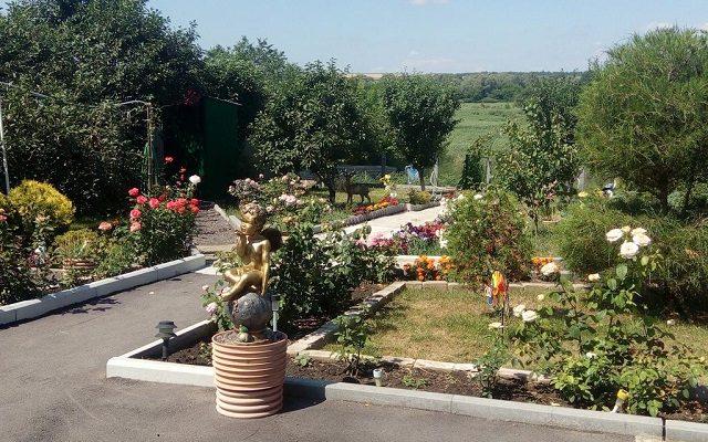 gostevoi-dvor-ivushka