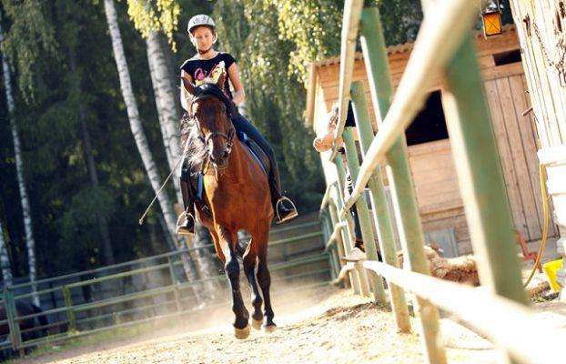 прогулки на лошадях в Хелиопарке Подмосковье