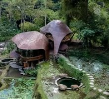 bambu-indah-4