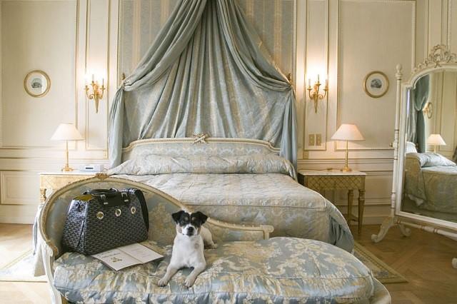 Отели и гостиницы с размещением животных в Сергиевом-Посаде