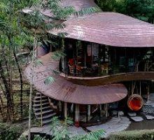 bambu-indah-3