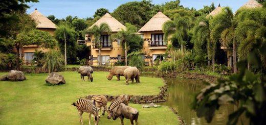 Необычные отели на острове Бали