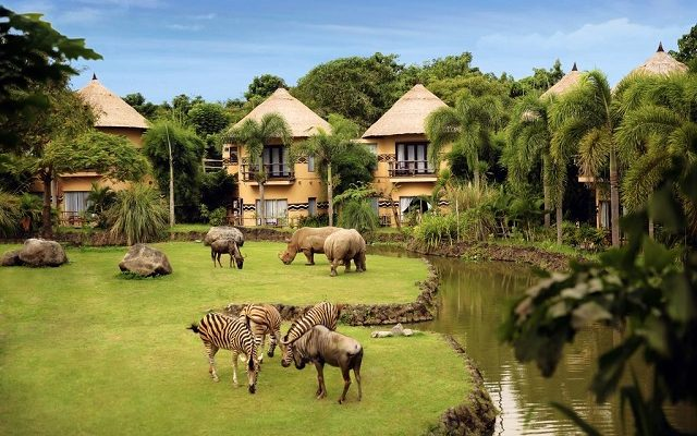 mara-river-safari-lodge-bali